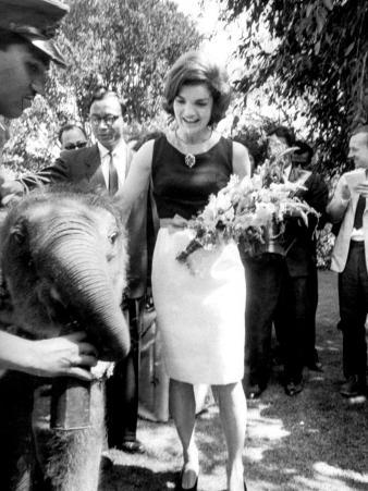Mrs John F. Kennedy During Her Tour of India