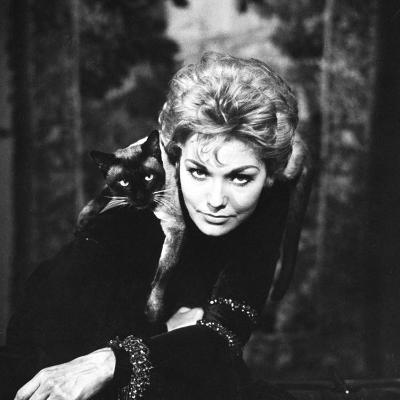 """Movie Actress Kim Novak with Siamese Cat During Filming of """"Bell, Book and Candle"""""""