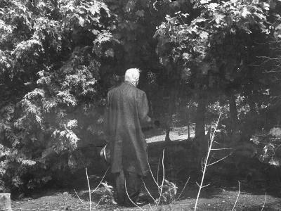 """Robert Frost During His Visit, Standing Near Tree Which Inspired His Poem """"Tree at My Window"""""""