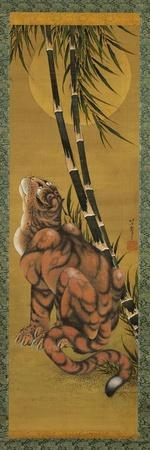 Tiger Among Bamboo with Full Moon