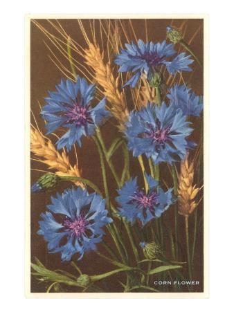 Corn Flowers and Wheat