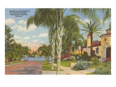 Palm-Lined Street, Orlando, Florida