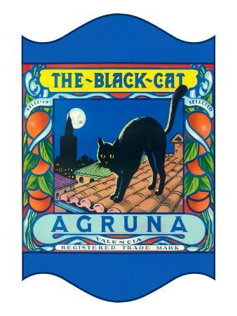 Black Cat Oranges