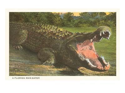 Florida Man-Eater, Alligator