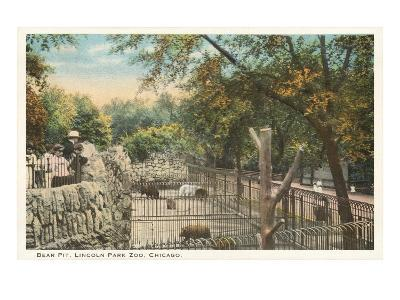 Bear Pit, Lincoln Park Zoo, Chicago, Illinois