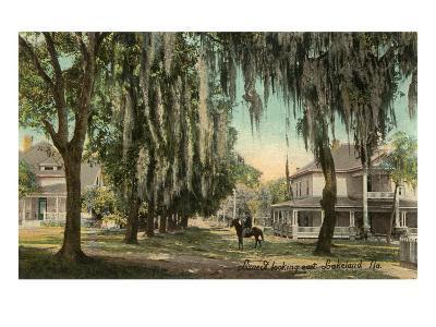 Lime Street, Lakeland, Florida