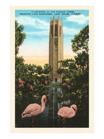 Flamingos, Singing Tower, Lake Wales, Florida