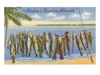 Fishin's Good in Florida