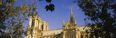 Low Angle View of a Cathedral, Notre Dame Cathedral, Paris, France