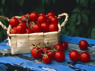 Still Life of Cherry Tomatoes in a Rectangular Woven Basket
