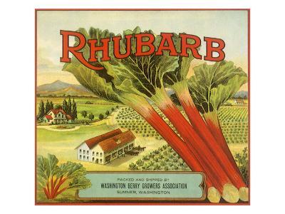 Rhubarb Fruit Label