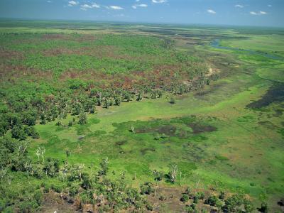 East Alligator River, Kakadu National Park, Northern Territory, Australia