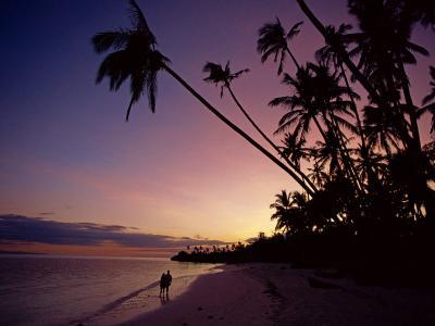 Couple and Palm Trees on Alona Beach Silhouetted at Sunset on the Island of Panglao, Philippines
