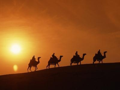 Riders Silhouetted on Camels at Sunset, Giza, Cairo, Egypt, North Africa, Africa