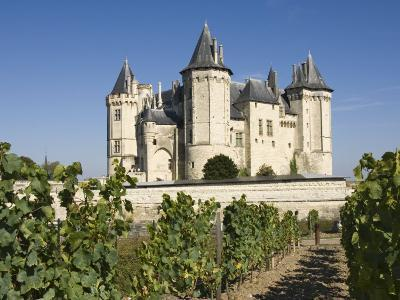Vineyards around the Chateau De Saumur, Maine-et-Loire, Pays De La Loire, France, Europe