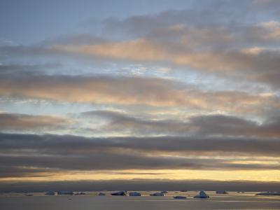 Dawn Clouds and Icebergs, Antarctic Peninsula, Antarctica, Polar Regions