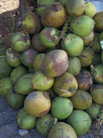 Close-Up of a Pile of Green Coconuts