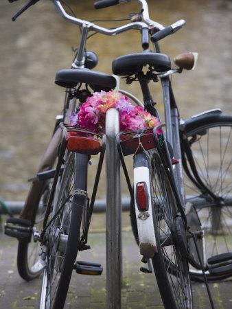Two Bicycles with a Flower Chain, Amsterdam, Netherlands, Europe