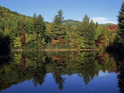 Fall Foliage Reflected in a Lake, Near Jackson, New Hampshire, New England, USA