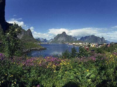 Reine Lofoten in Summer, Nominated Norway's Most Beautiful Village, Lofoten Islands, Norway