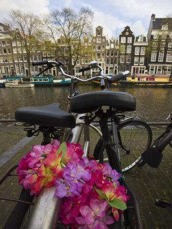 Flower Chain Holding Two Bicycles Together, Amsterdam, Netherlands, Europe