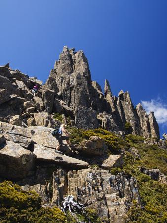 Cradle Mountain Lake St. Clair National Park, Part of Tasmanian Wilderness, Tasmania