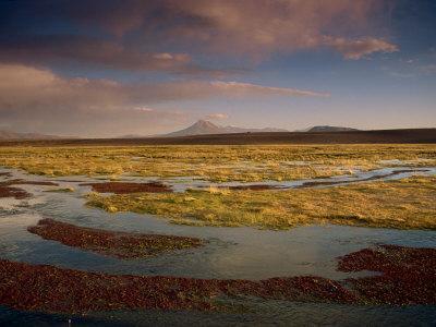 Landscape in the Isluga Area of the Atacama Desert, Chile, South America