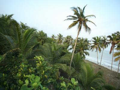 Labadi Beach, Accra, Ghana, West Africa, Africa