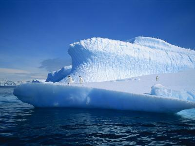 Adelie Penguins on Iceberg, Antarctica, Polar Regions