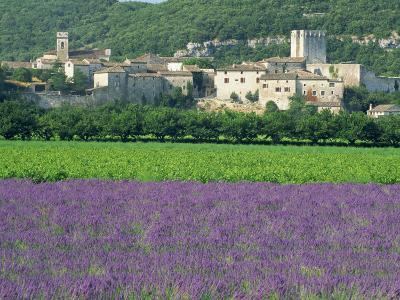 Field of Lavender and Village of Montclus Behind, Gard, Languedoc-Roussillon, France, Europe