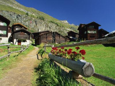 Red Geraniums Beside Path into Village, Zum See, Zermatt, Valais, Switzerland, Europe