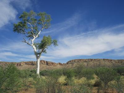 Landscape in the West Macdonnell Ranges Near Alice Springs in the Northern Territory, Australia