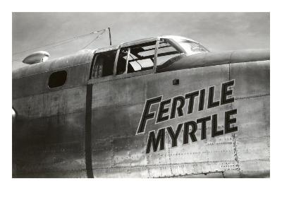 Nose Art, Fertile Myrtle