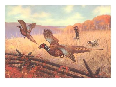 Man Shooting Pheasants, Pointer