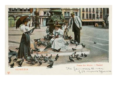 Pigeons in St. Mark's Square, Venice, Italy