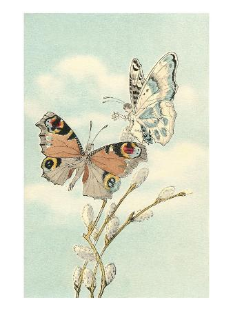 Butterfly People on Pussy Willows