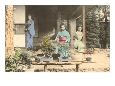 Japanese Girls with Bonsai
