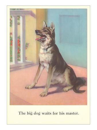 Big Dog Waits for Master