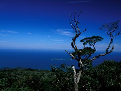 View from Pico Do Papagaio, Ilha Grande, Rio De Janeiro State, Brazil