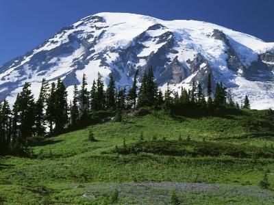 Mt. Rainier from Paradise, Mt. Rainier National Park, Washington, USA