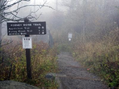 Appalachian Trail near Clingman's Dome, Great Smoky Mountains, Tennessee, USA