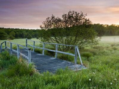 Footbridge spans a small stream, Highland Farm, York, Maine, USA