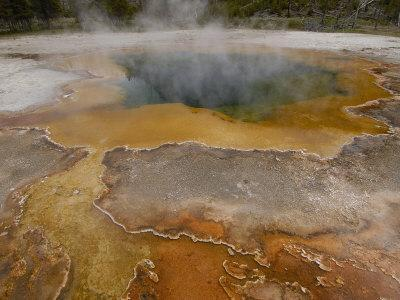Sulphur Caldron, Yellowstone National Park, Wyoming, USA