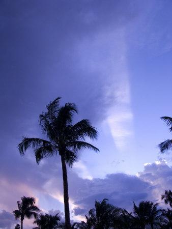 Sunset, Captiva Island, Florida