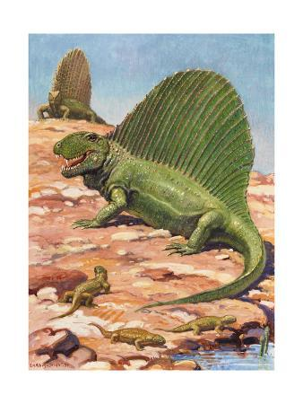 Dimetrodons' Spines Could Grow Up to Four Feet High