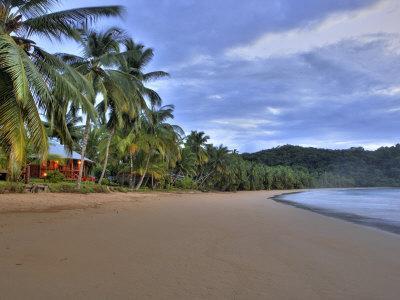 House and Palm Trees Along the Beach on Principe Island