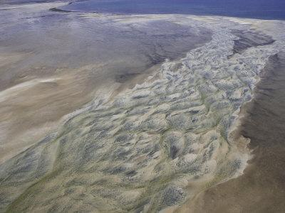 Patterns of Tidal Water Along the Coast of Mozambique