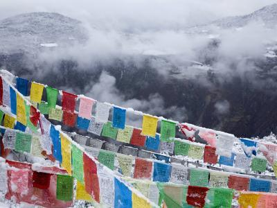 Buddhist Prayer Flags in Fresh Snow East of Deqin