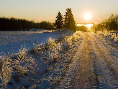 Sunlight Down a Dirt Road in a Snowy Winter Landscape