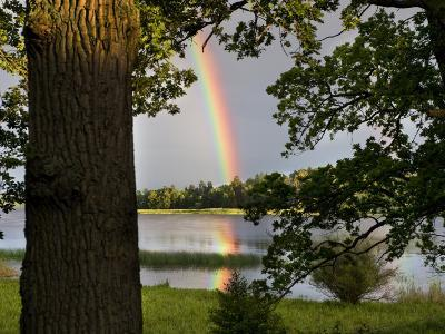 Rainbow over Water and Forest in the Summer